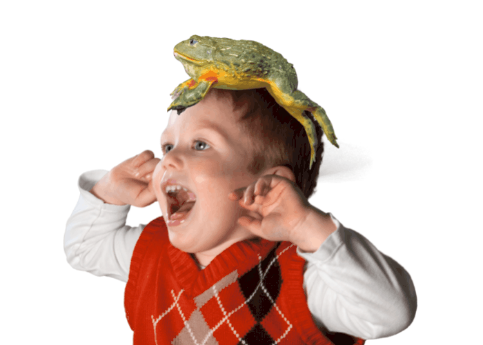 little boy screaming with a frog on his head